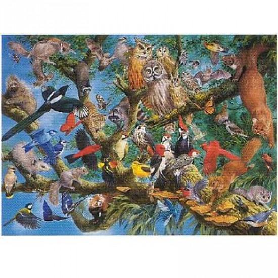 Puzzle 1000 pièces - Oiseaux des cimes - Hamilton-MC5/1038