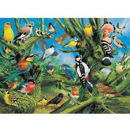 Puzzle 1000 pièces - Oiseaux européens - Hamilton-EB1/1056