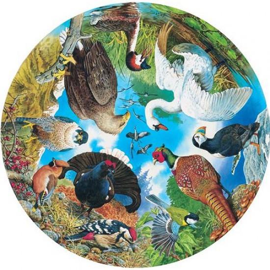 Puzzle 500 pièces rond - Les oiseaux du lac, de la forêt et des champs - Hamilton-BL1/0516