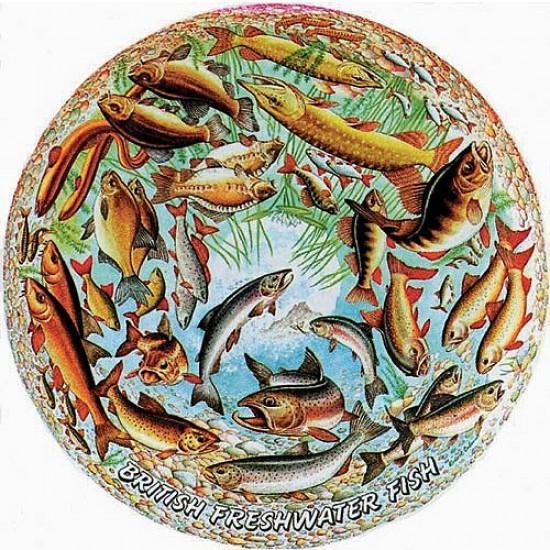 Puzzle 500 pièces rond - Les poissons - Hamilton-205