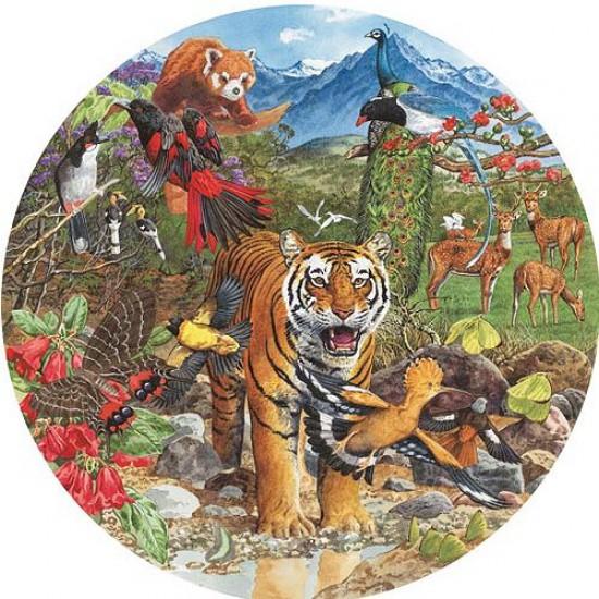 Puzzle 500 pièces rond - Tigre d'Himalaya - Hamilton-HT1/5001
