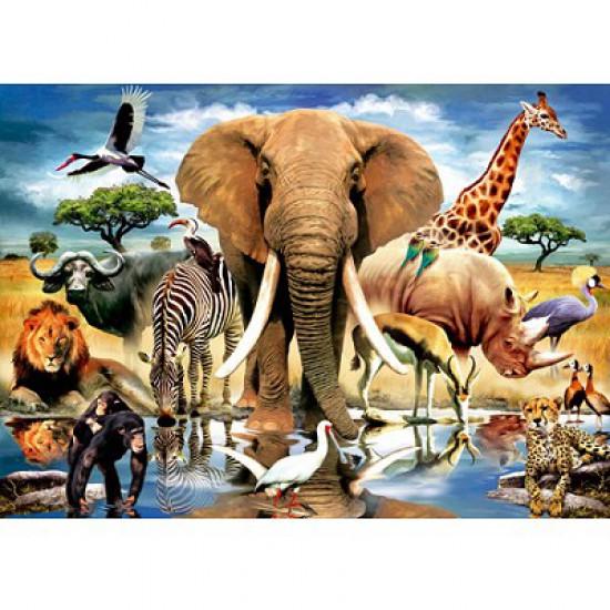 Puzzle 1000 pièces - Faune du Kenya - Jumbo-01864