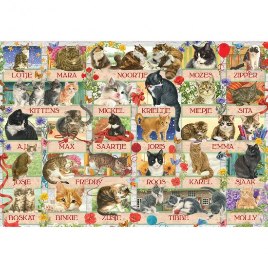 Puzzle 1000 pièces : Anniversary Cats - Jumbo-18324