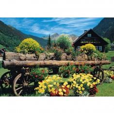 Puzzle 1000 pièces : Fleurs des Alpes