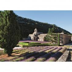 Puzzle 1000 pièces : Provence