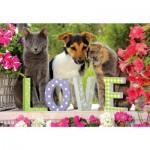 Puzzle 1000 pièces : Tendresse chats et chiens