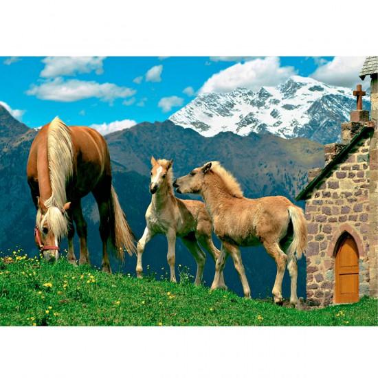 Puzzle 500 pièces : Chevaux dans les Alpes - Diset-Jumbo-17321