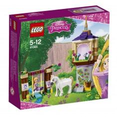Lego 41065 Disney Princess : Le jardin de Raiponce
