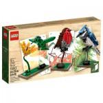 Lego 21301 Ideas : Les oiseaux