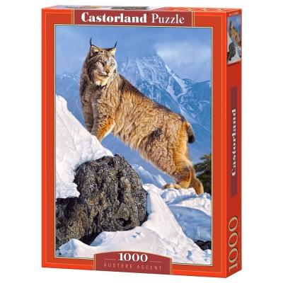 Castorland Puzzle 1000 pièces : lynx