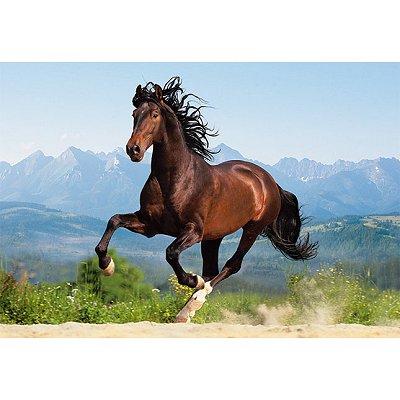 Castorland puzzle 1500 pi ces cheval au galop rue des puzzles - Comment dessiner un cheval au galop ...