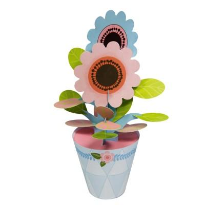 Avenue Mandarine coffret créatif happy mandarine box : petites plantes