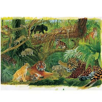 James Hamilton puzzle 1000 pièce - les félins de la jungle