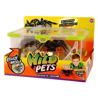 Kanai Kids Terrarium et araignée Wild Pets