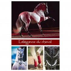 Puzzle 1000 pièces : L'élégance du cheval