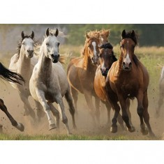 Puzzle 1000 pièces - Horde de chevaux sauvages