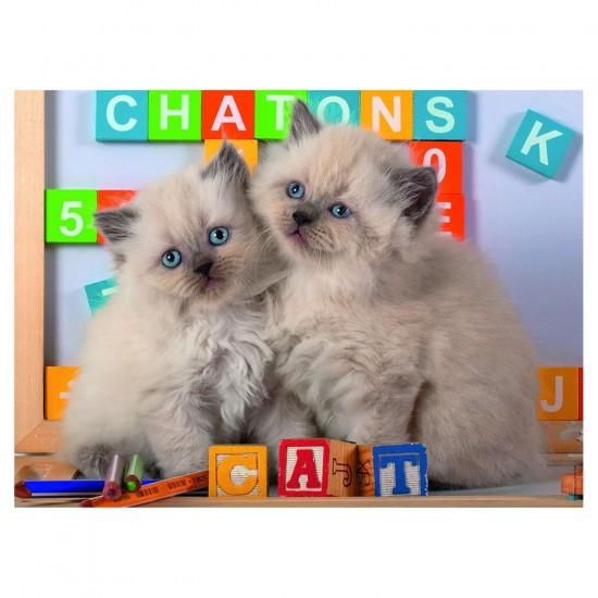 Puzzle 150 pièces : Chatons - Nathan-Ravensburger-86861