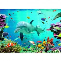 Puzzle 1500 pièces : Monde sous l'eau