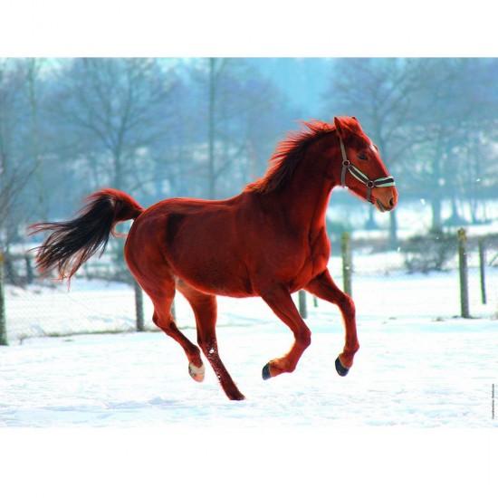 Puzzle 250 pièces : Cheval dans la neige - Nathan-Ravensburger-86908