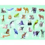 Puzzle 30 pièces : ABC Animaux
