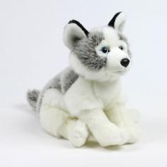 Peluche : WWF Husky