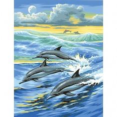 Peinture au numéro  Débutants : Dauphins