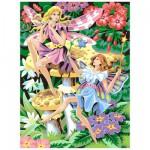 Peinture au numéro  Débutants : Les fées