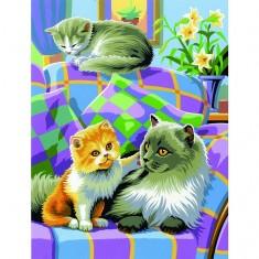Peinture au numéro Débutants Duo : Chats