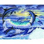 Peinture au numéro Initiés : Dauphins au clair de lune