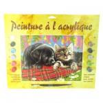 Peinture au numéro Débutants : Comme chient et chat