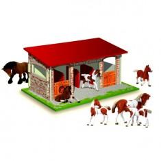 Box à chevaux