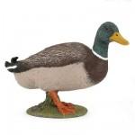 Figurine canard colvert