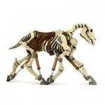 Figurine cheval squelette