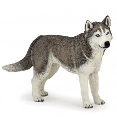 Figurine chien : Husky de Sibérie