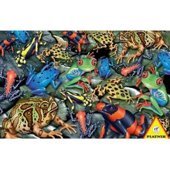 Puzzle 1000 pièces - Grenouilles - Piatnik-5552