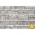 Puzzle 1000 pièces - Partition musicale