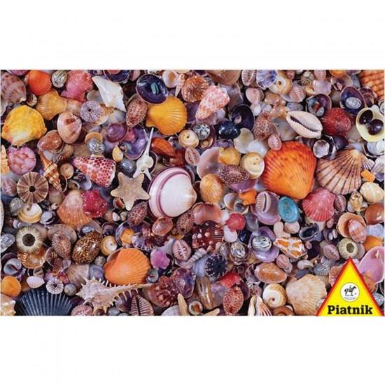 Puzzle 1000 pièces - Pêle-mêle de coquillages - Piatnik-5663