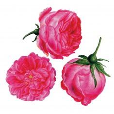 Puzzle d'art en bois 150 pièces Michèle Wilson - Redouté : Trois Roses