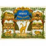 Puzzle en bois Art maxi 50 pièces : Le jardin des plantes