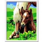 Peinture au numéro Numéro d'Art Classic : Tendre jument et son poulain