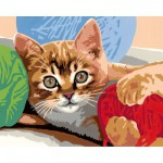 Peinture au numéro : Numéro d'Art Grand format : Chaton à la pelote de laine