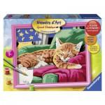 Peinture au Numéro : Numéro d'art Grand Format : Dors bien petit chat