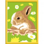 Peinture au numéro : Numéro d'Art Mini format : Lapin coquin