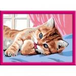 Peinture au numéro : Numéro d'Art Moyen format : La toilette du chaton