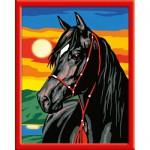 Peinture au numéro : Numéro d'Art Moyen format spécial : Etalon noir
