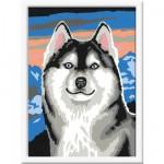 Peinture au numéro : Numéro d'Art Petit format : Fier Husky
