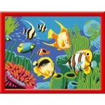 Peinture au numéro : Numéro d'Art Petit format : Poissons multicolores