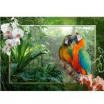 Puzzle 1000 pièces - Les perroquets