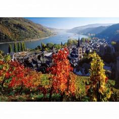 Puzzle 1000 pièces - Vignoble sur le Rhin