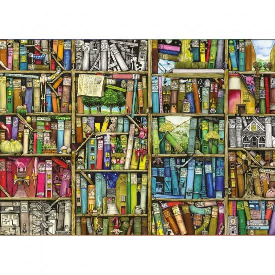Puzzle 1000 pièces : Bibliothèque magique - Ravensburger-19137